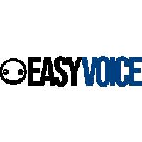 EasyVoice